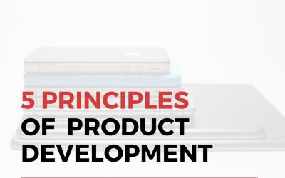 5 Principles of Successful Product Development